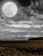 Pleine lune et frissons .JPG
