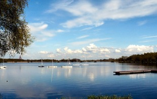 Lac Chabaud Latour - CONDE SUR L'ESCAUT - Condé-sur-l'Escaut
