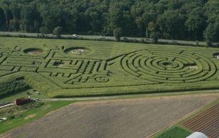 Labyrinthe Végétal Beauregard - Aubry-du-Hainaut