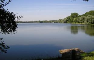 Site naturel d'Amaury - HERGNIES - Hergnies