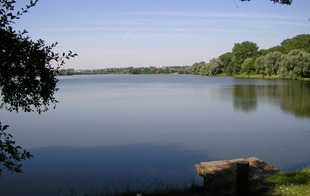 Site naturel d'Amaury - Hergnies