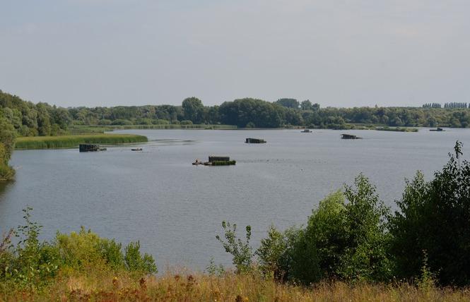 Lac Chabaud Latour - CONDE SUR L'ESCAUT 4 - Condé-sur-l'Escaut