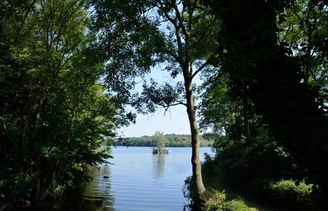 Lac Chabaud Latour - CONDE SUR L'ESCAUT 5 - Condé-sur-l'Escaut