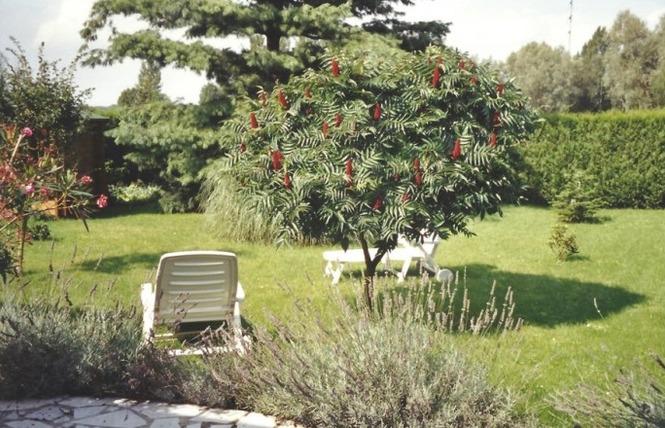 Les Jardins d'Emma 5 - Vicq