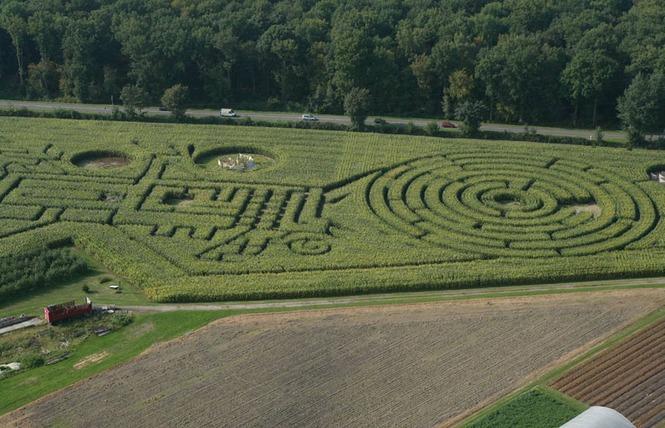 Labyrinthe Végétal Beauregard 1 - Aubry-du-Hainaut